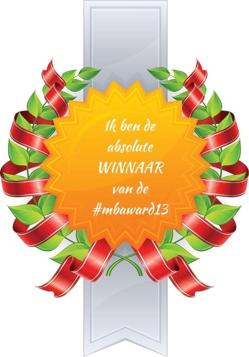 Winnaar het beste blog van 2013