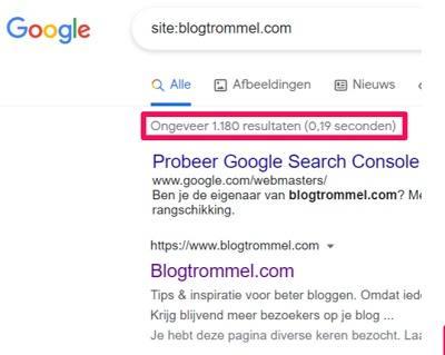 Screenshot afkomstig uit Google. Toont het aantal pagina's geïndexeerd door Google.